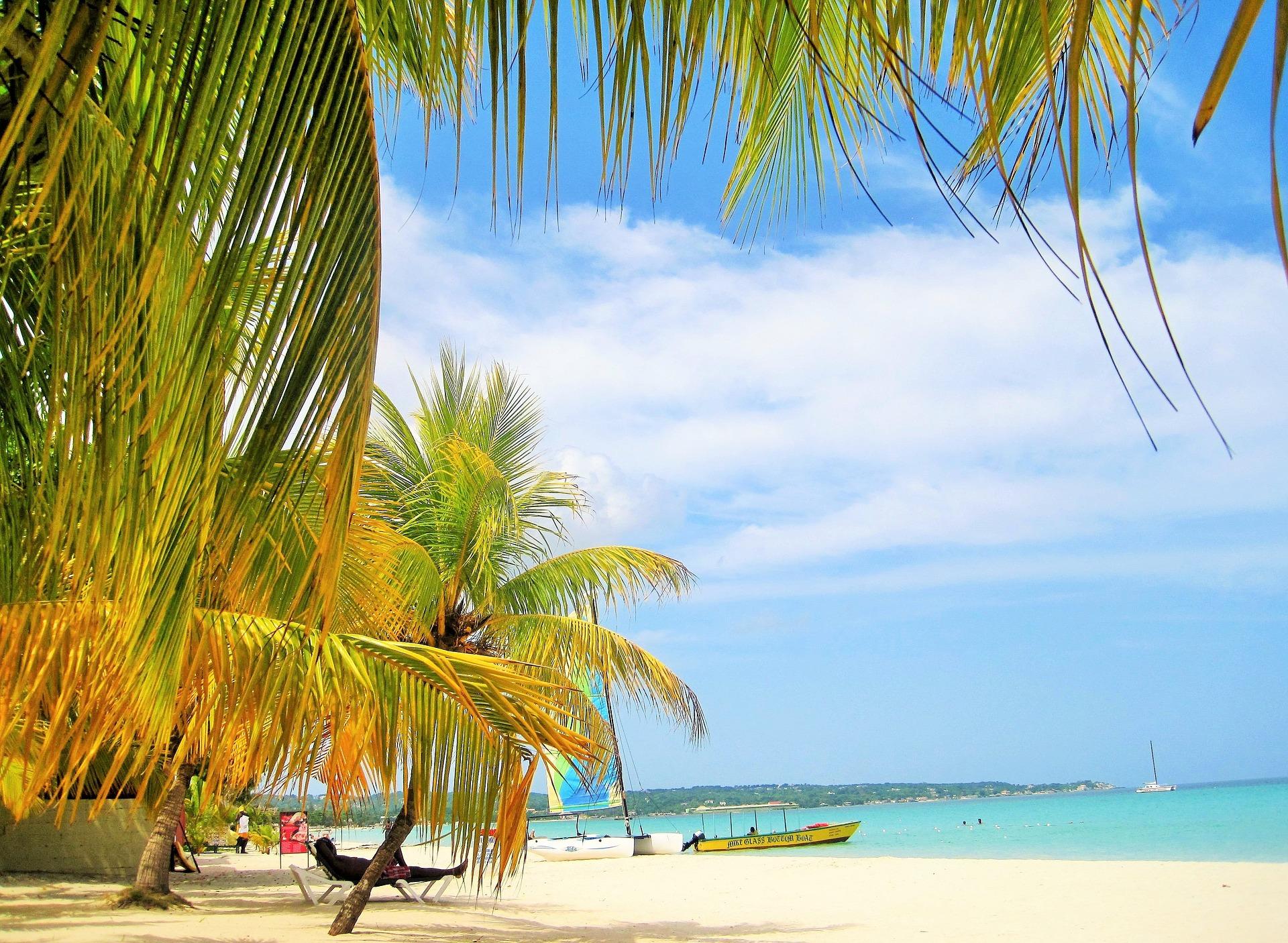 ямайка пляж з пальмами