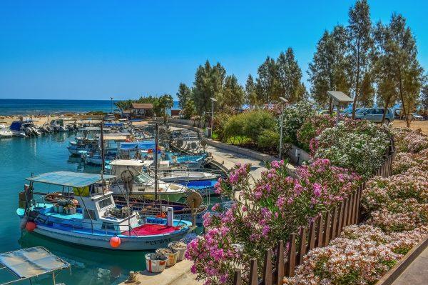 Кіпр рибацька затока