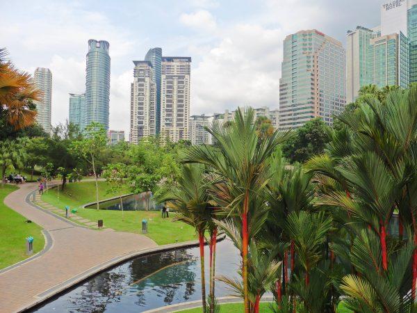 Куала-Лумпур місто пальми