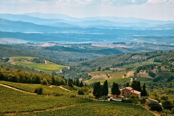 тосканія винна долина