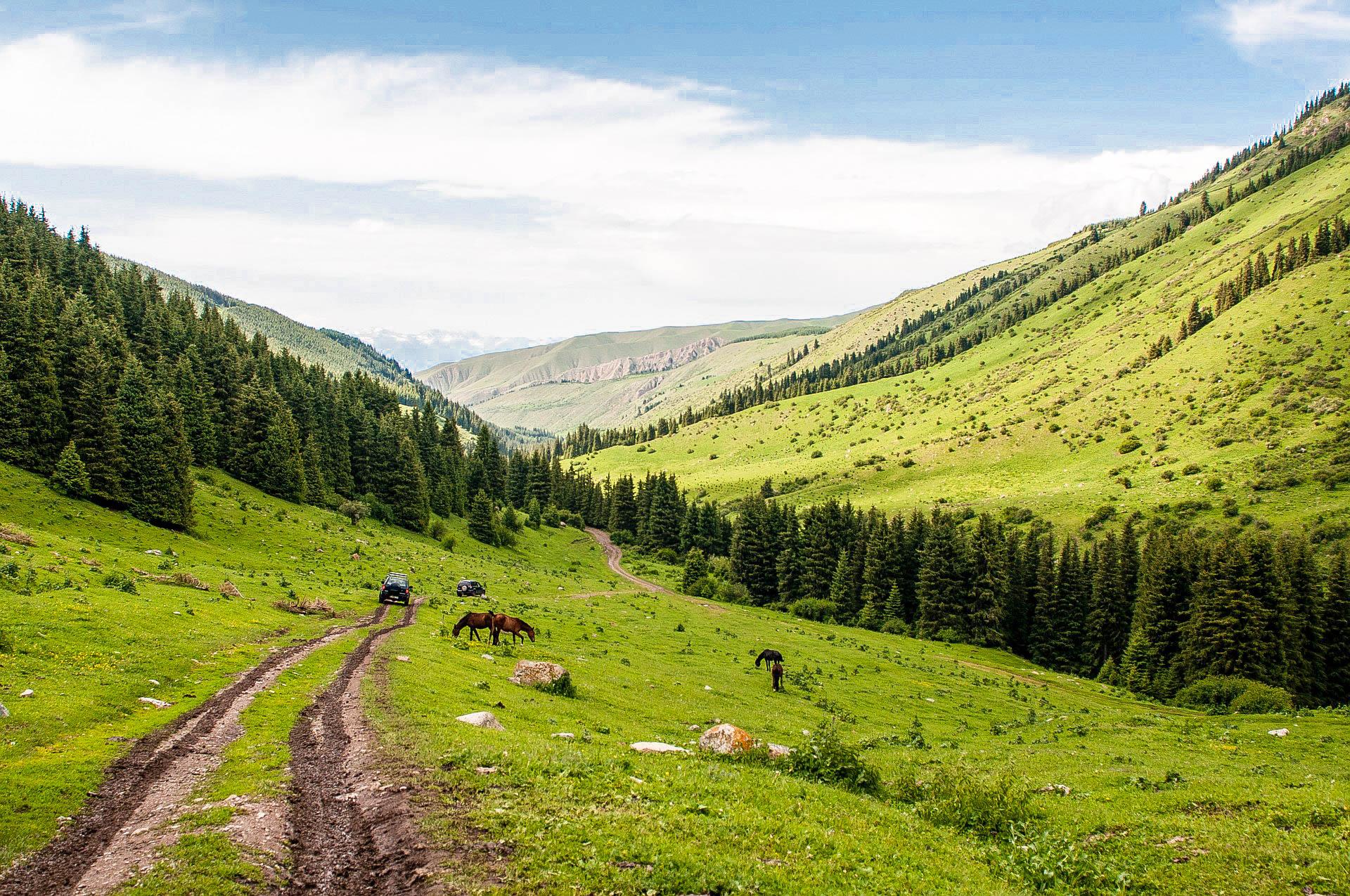 Узбекистан природа