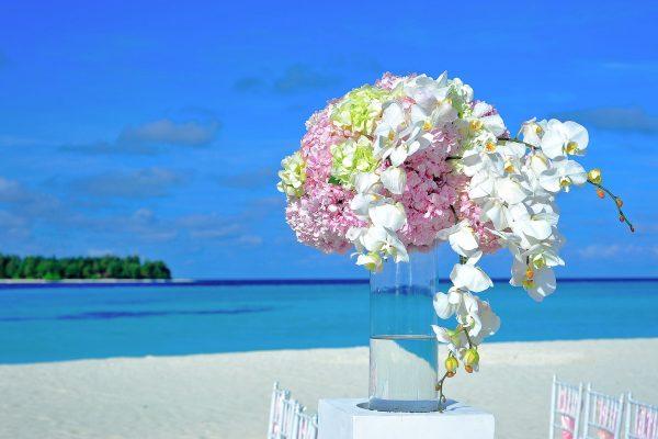 Мальдіви квіти