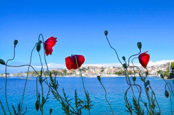 Греція Халкідікі