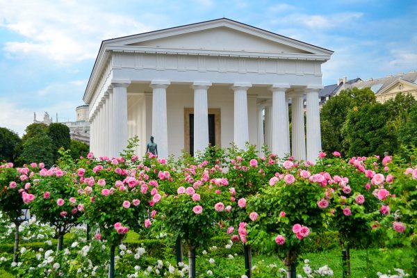 Австрія Відень парк троянд