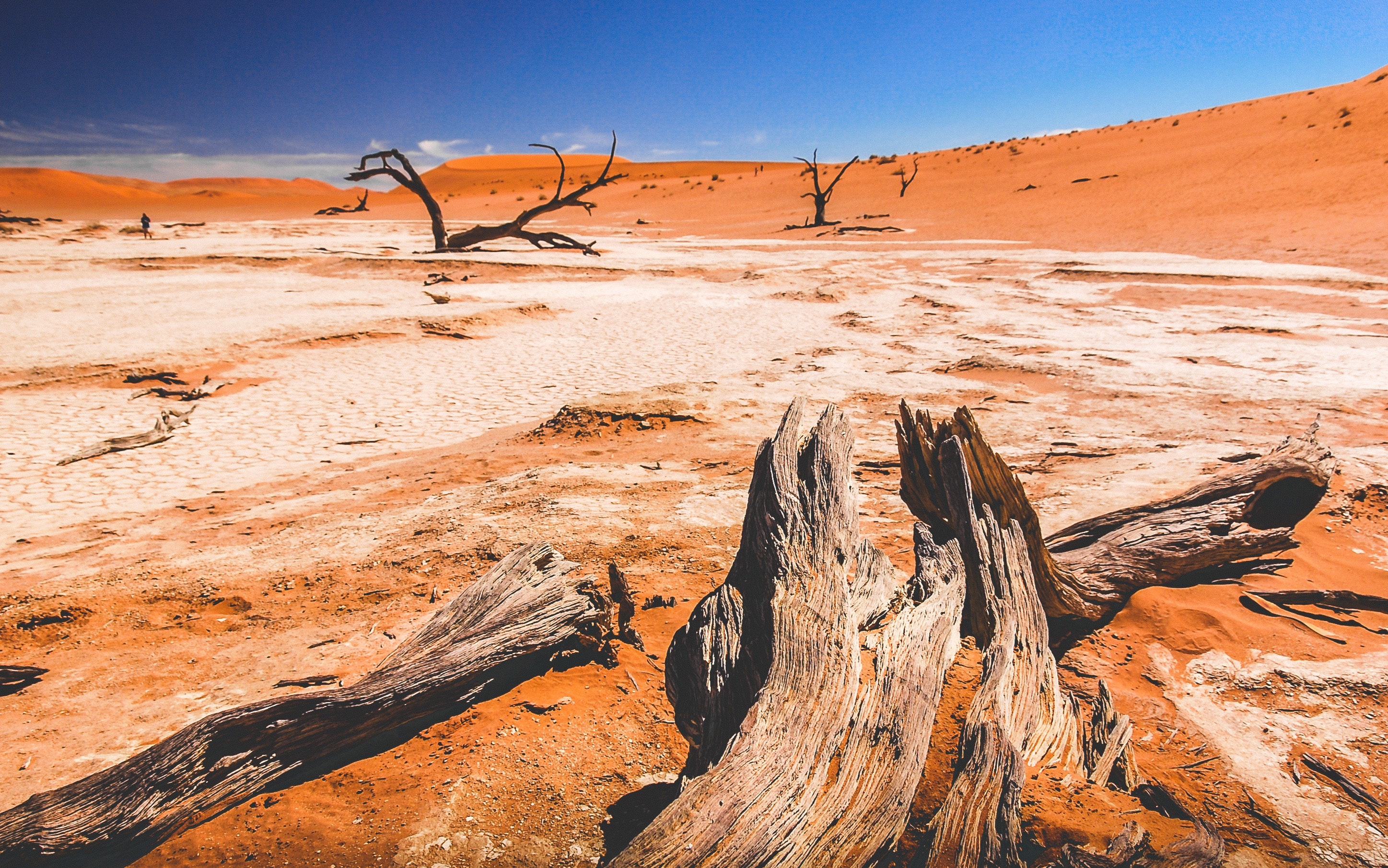 Африка Намібія пустеля