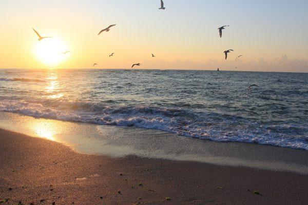 Україна Одеса Затока море