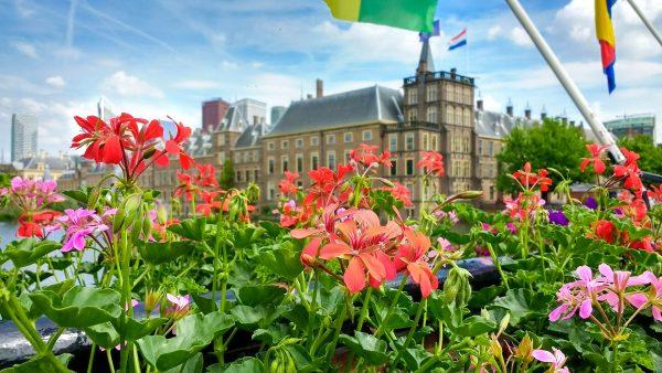 Голландія Гаага