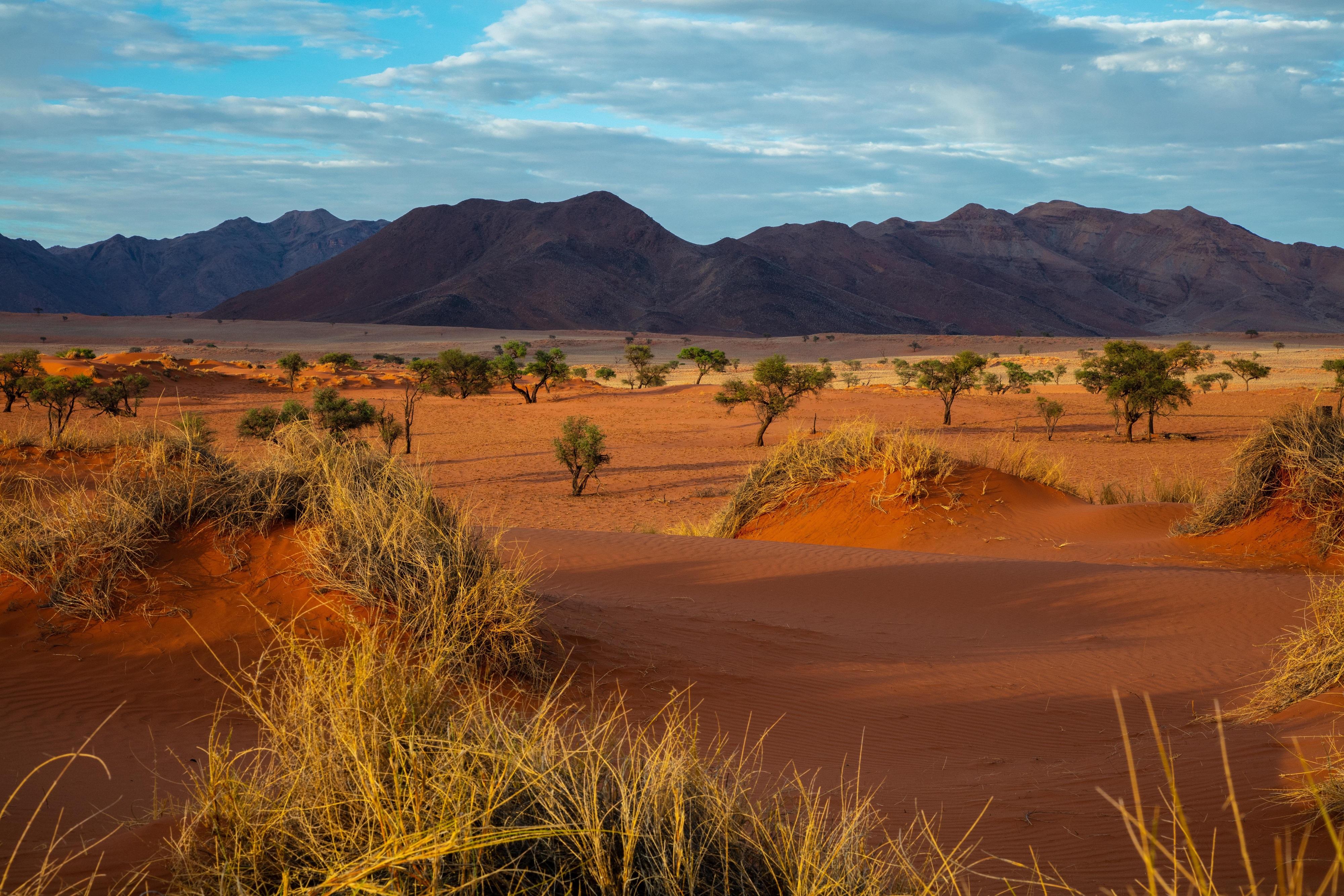 намібія пейзаж