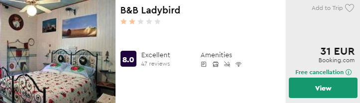 B&B Ladybird