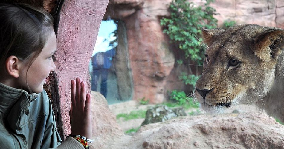 zoo-hannover