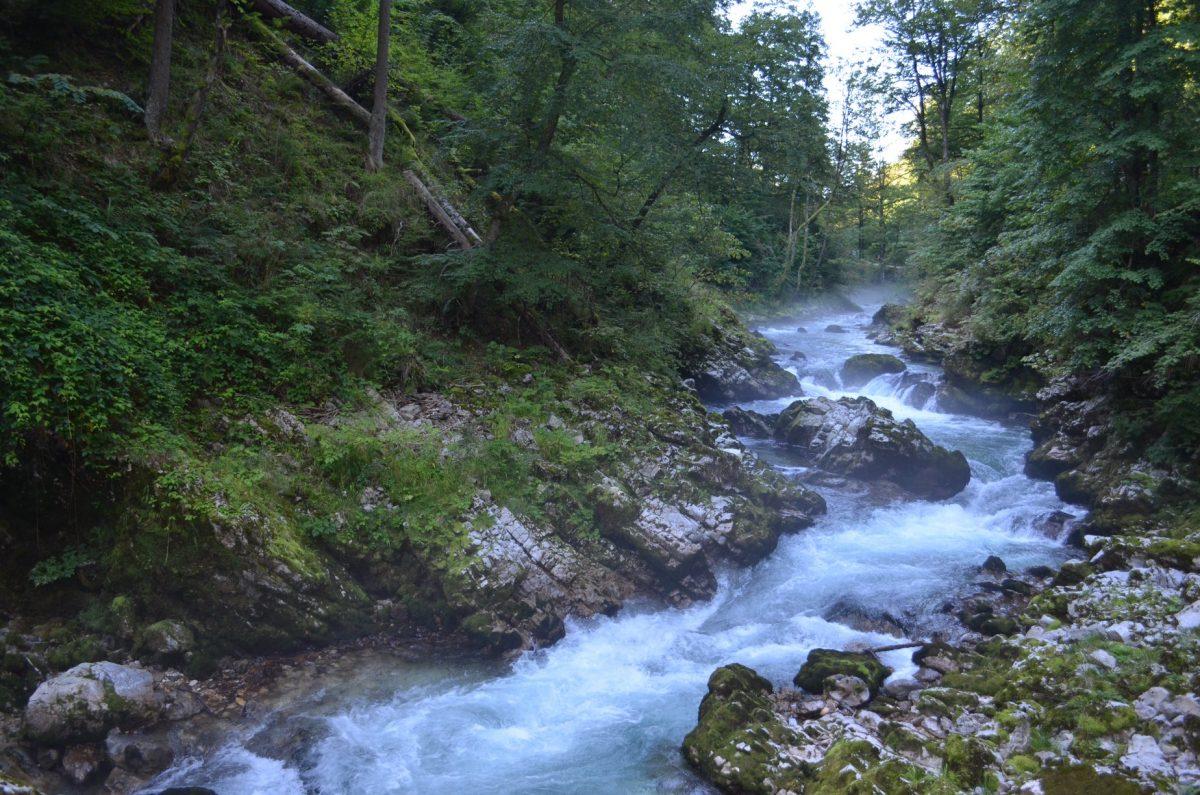 Вінтнгар, Словенія