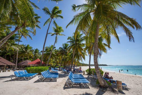домінікана пляж пальми