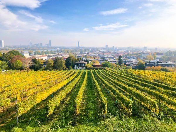 Австрія Баден Відень