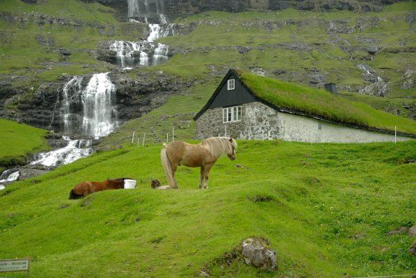 Данія Фарерські острови