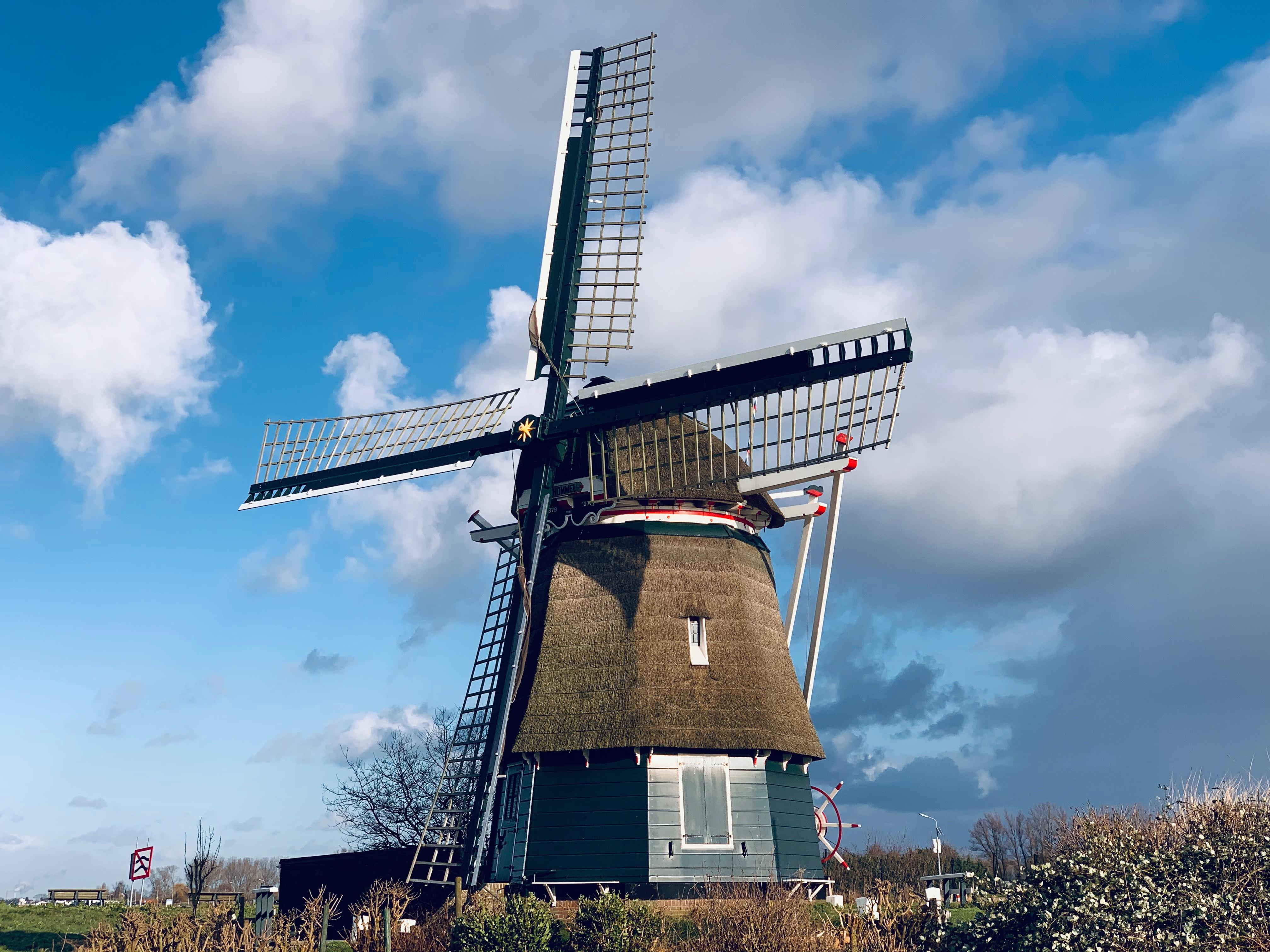 Голландія Гарлем