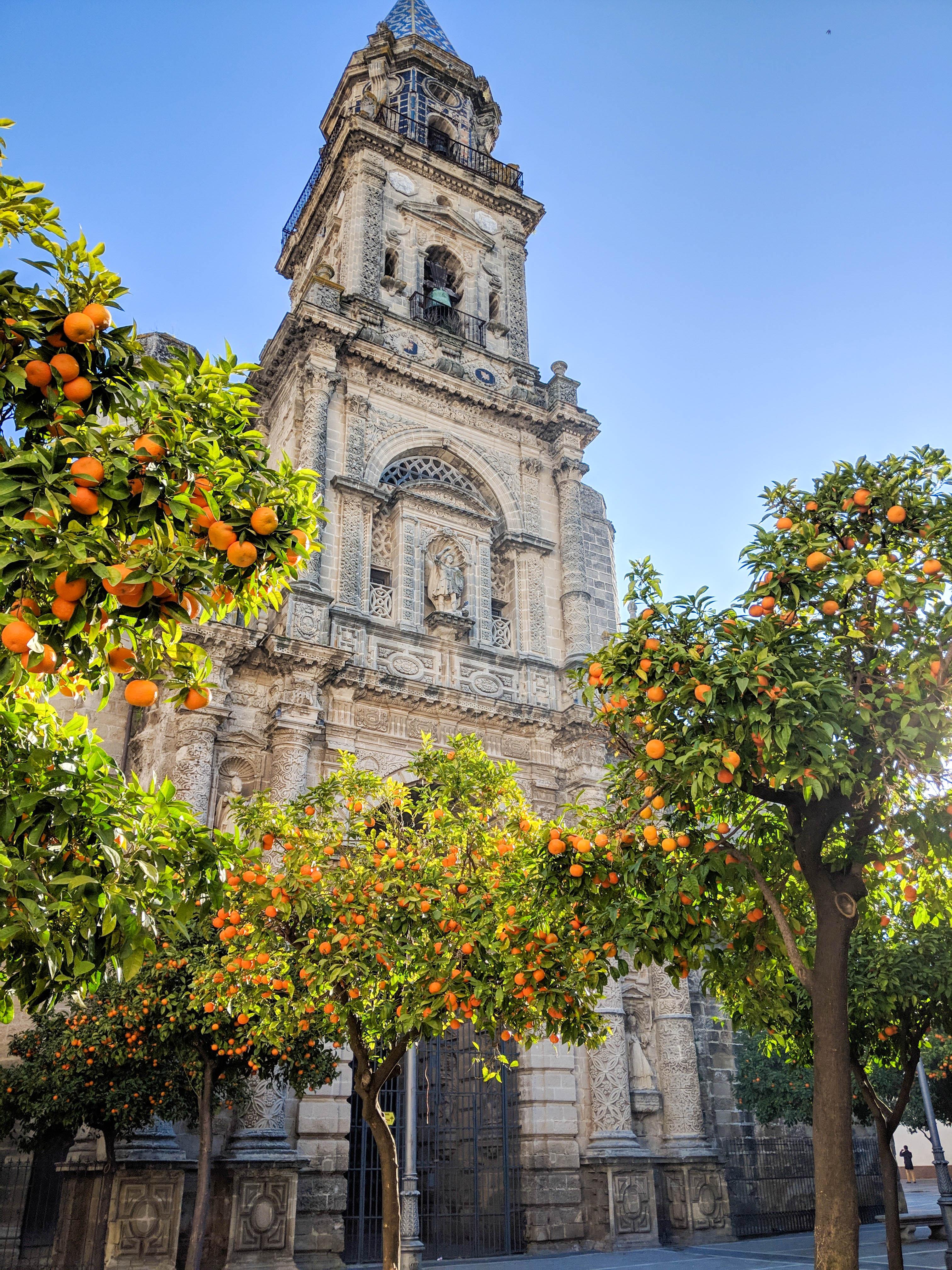 Іспанія Андалусія Херес де ла Фронтера