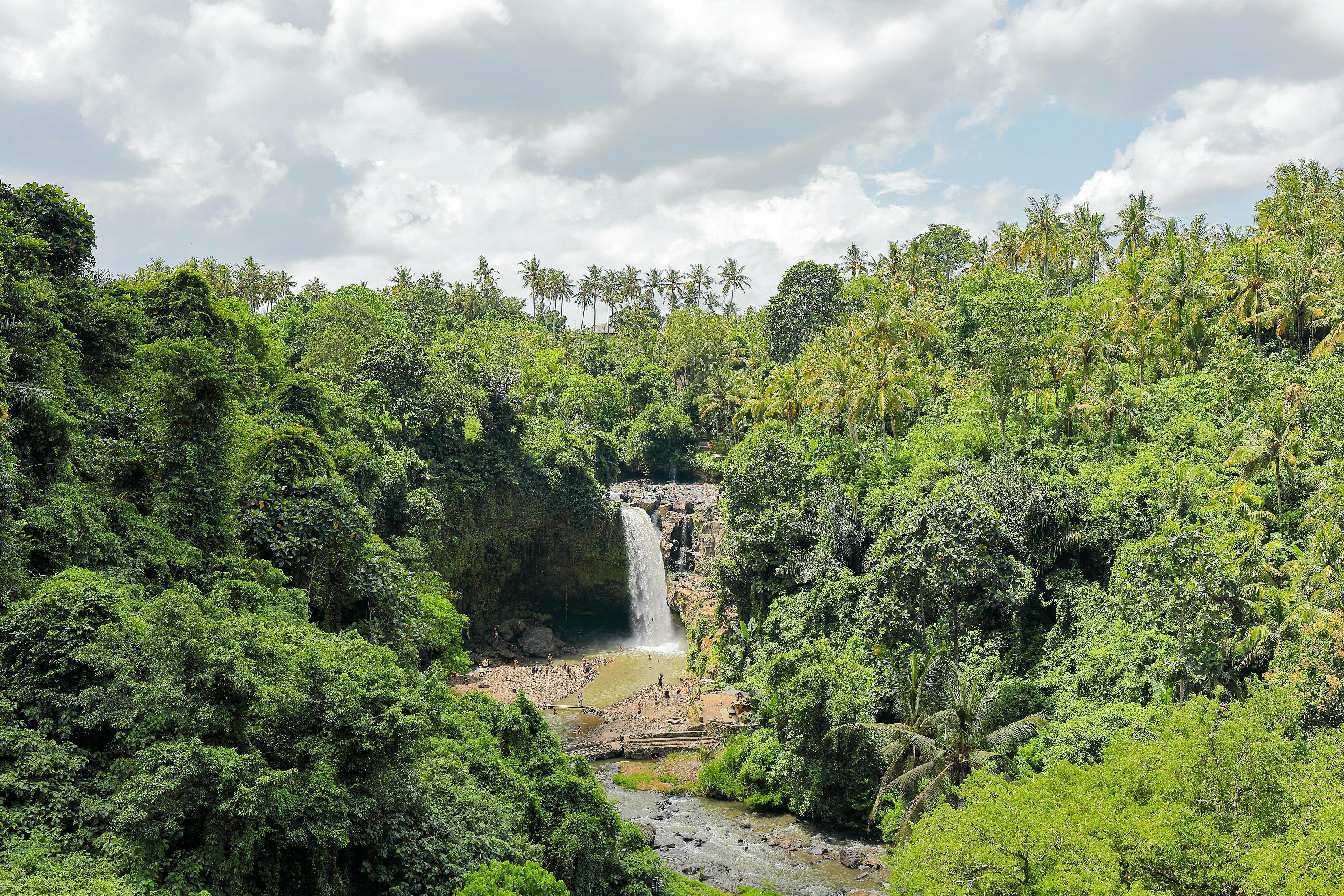 Індонезія Балі Тегенунган