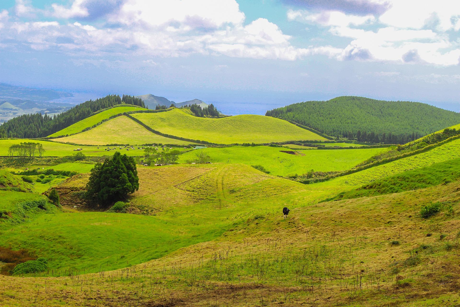 Португалія Азорські острови