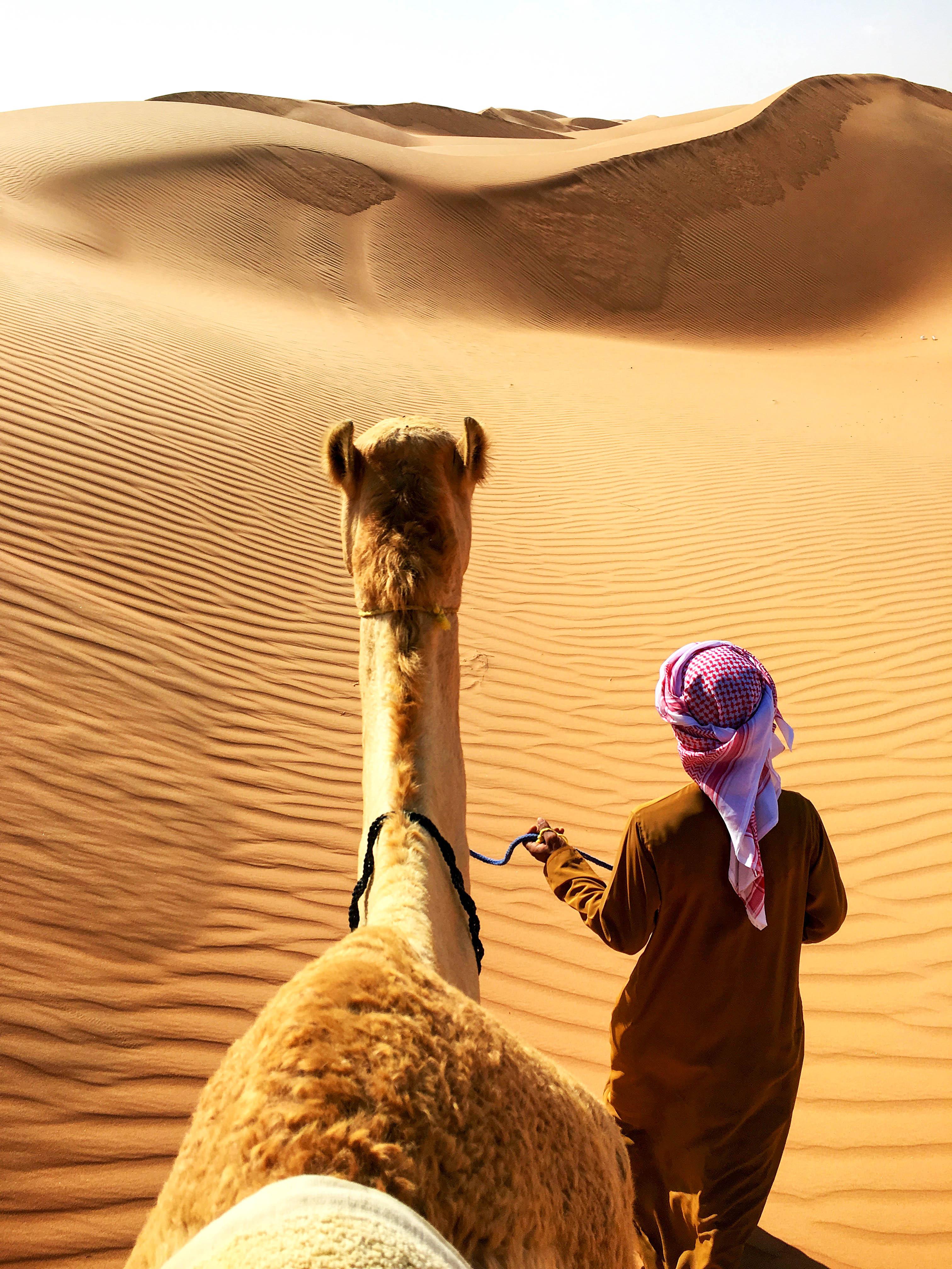 Оман Вахіба