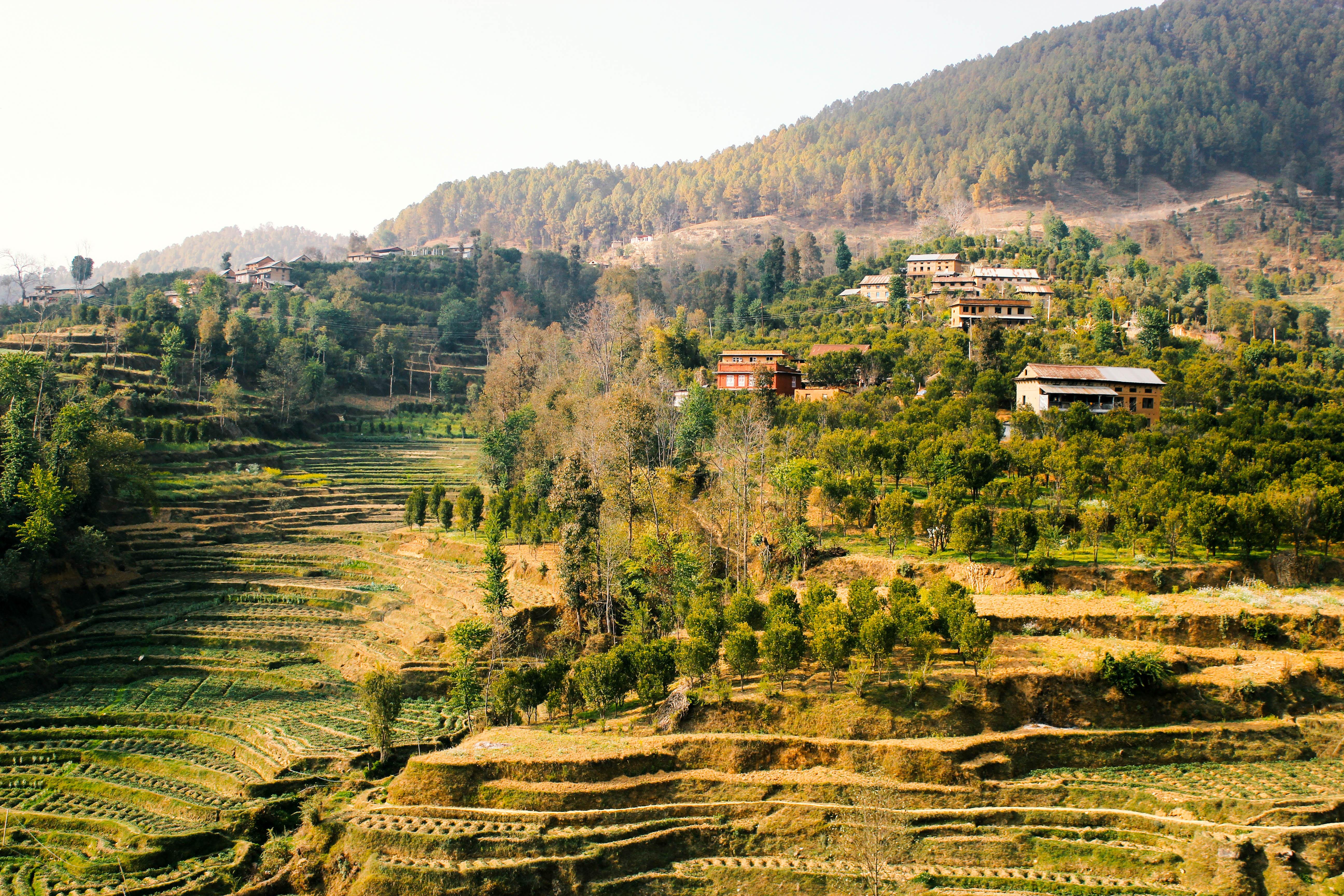 Непал долина Катманду