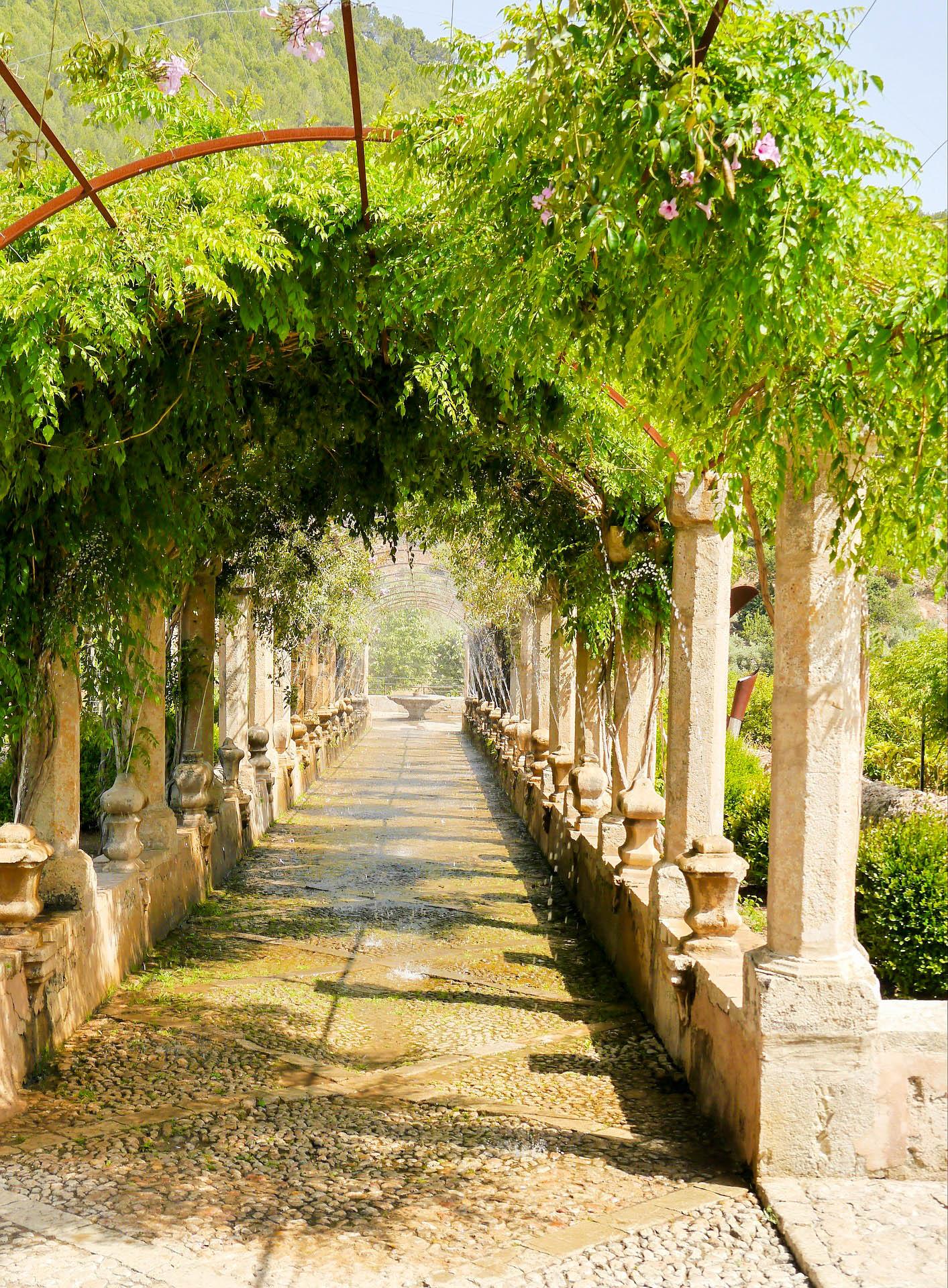 Іспанія Майорка сади Альфабія