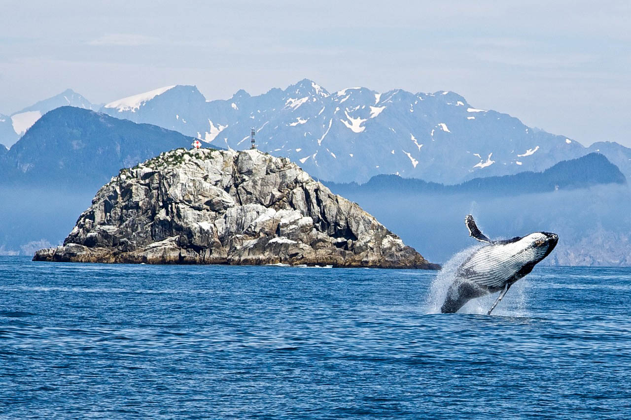 США Аляска Кенай-Фіордс