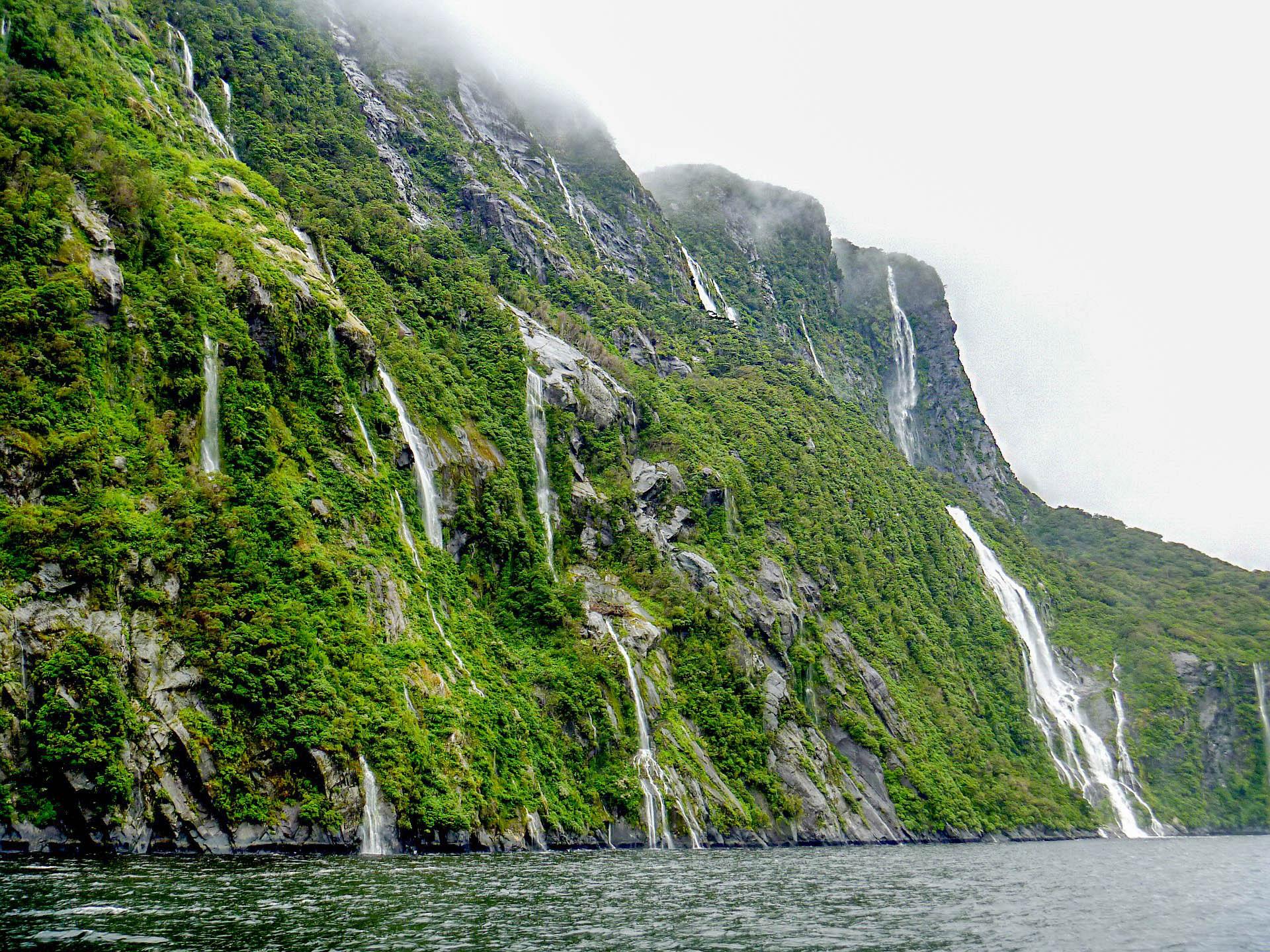 Нова Зеландія Браун