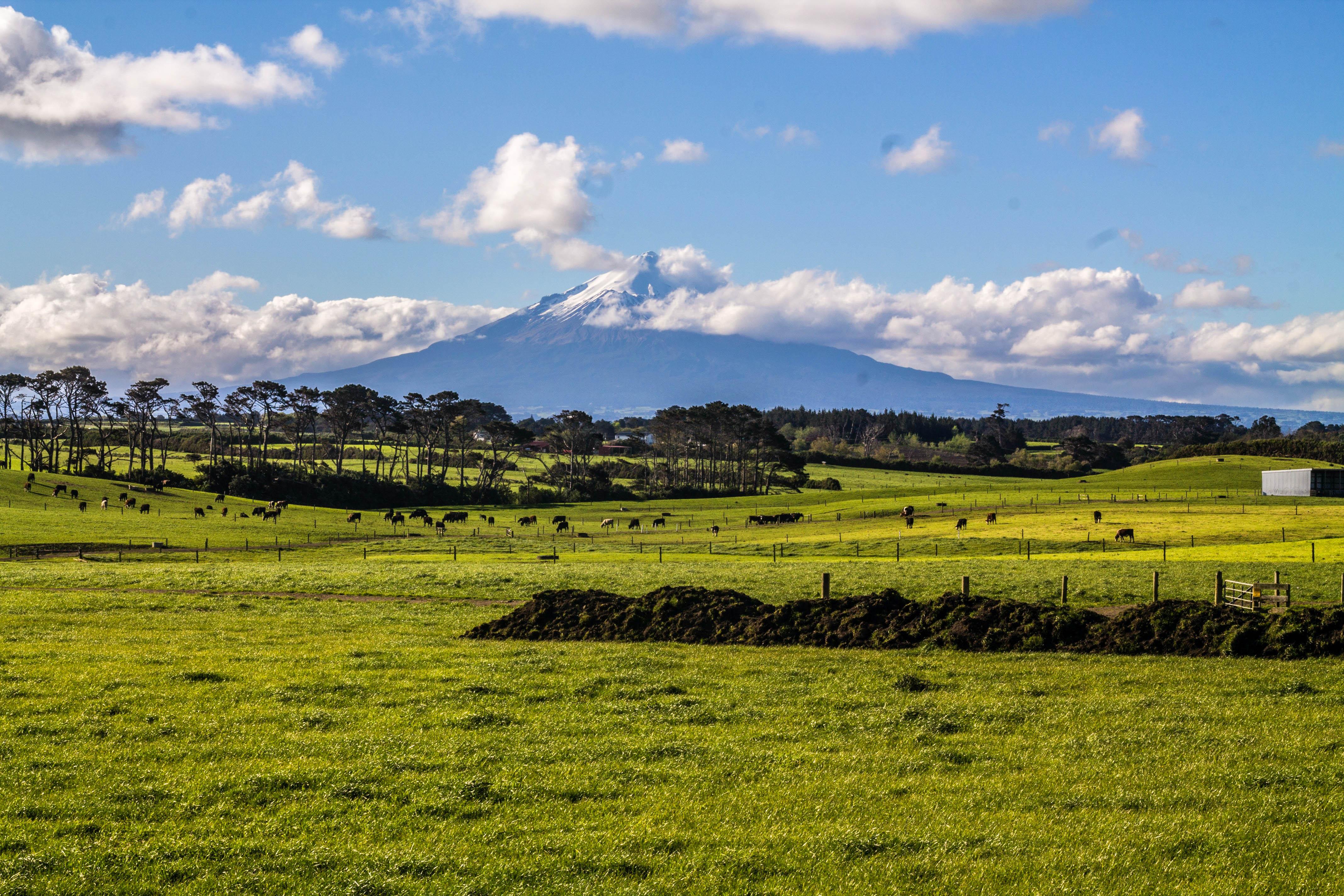 Нова Зеландія Егмонт