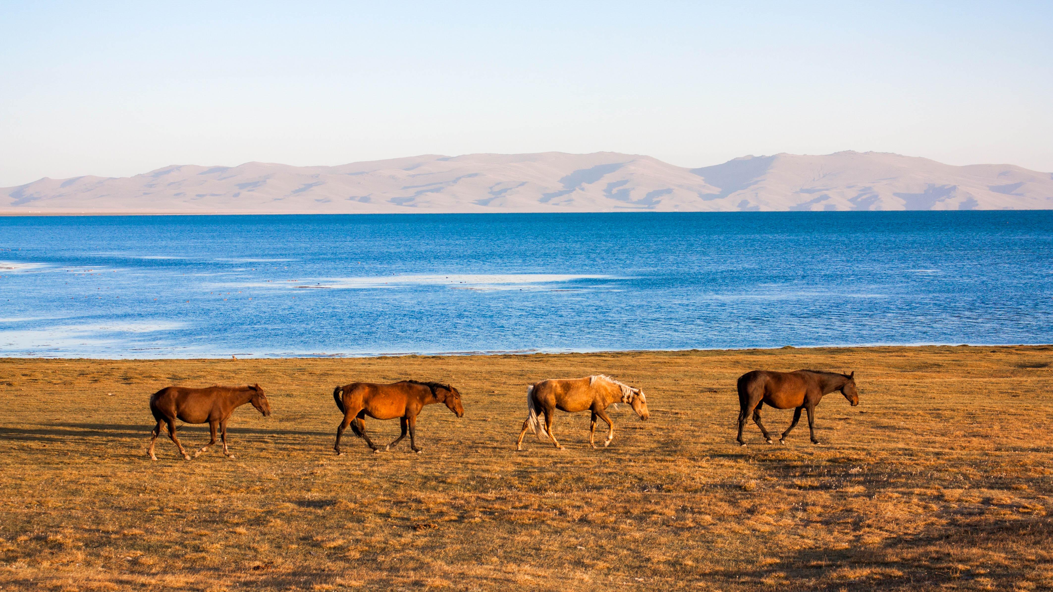 Киргизстан Сон-Куль
