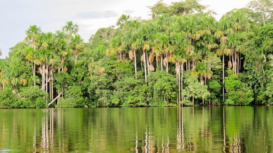 Перу Амазонка
