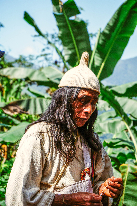 Колумбія Сьєрра-Невада-де-Санта-Марта