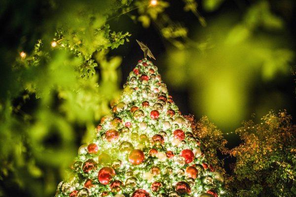 Новий рік Різдво