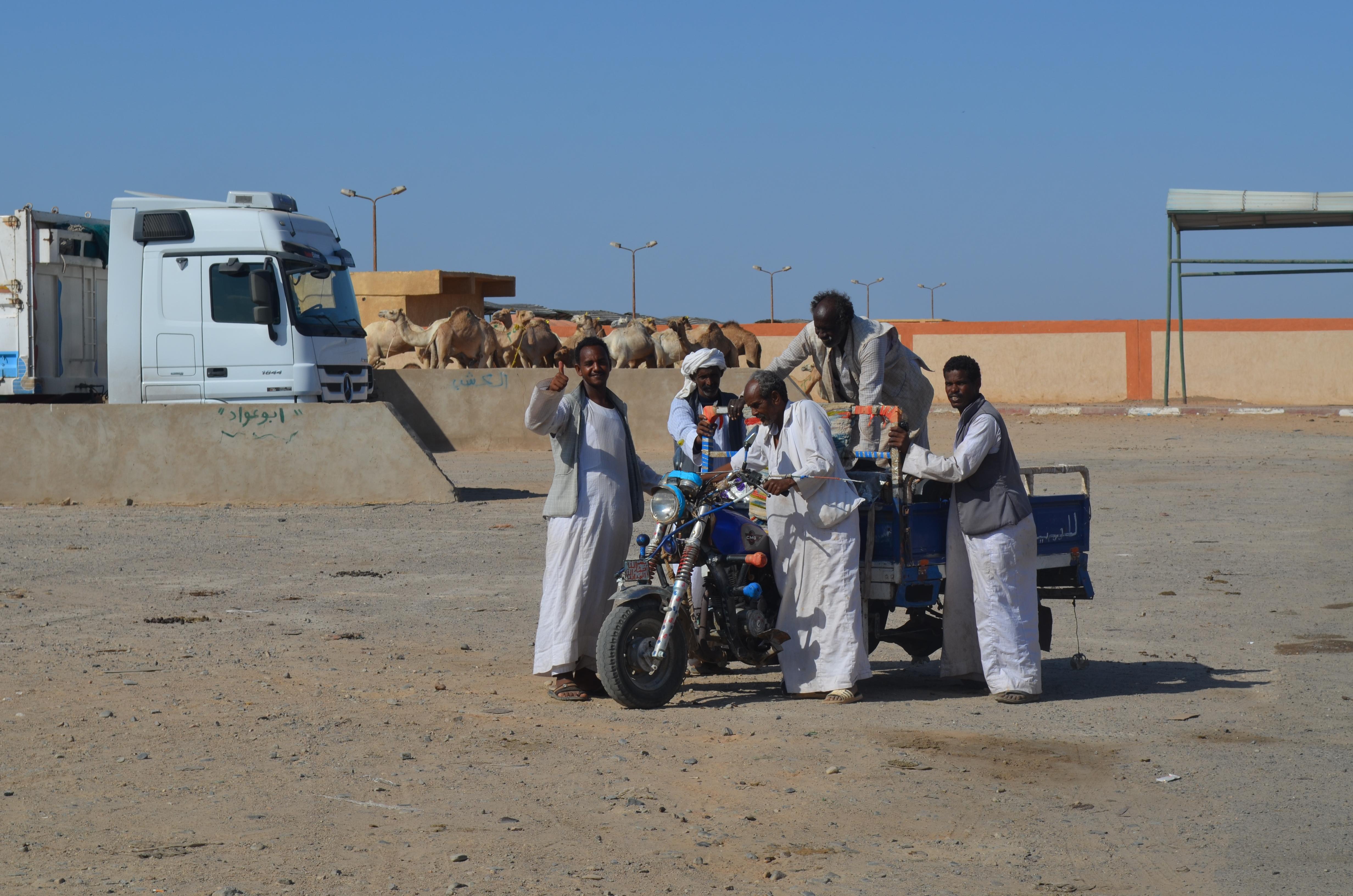 На верблюдячому базарі. Шалатін, Єгипет.