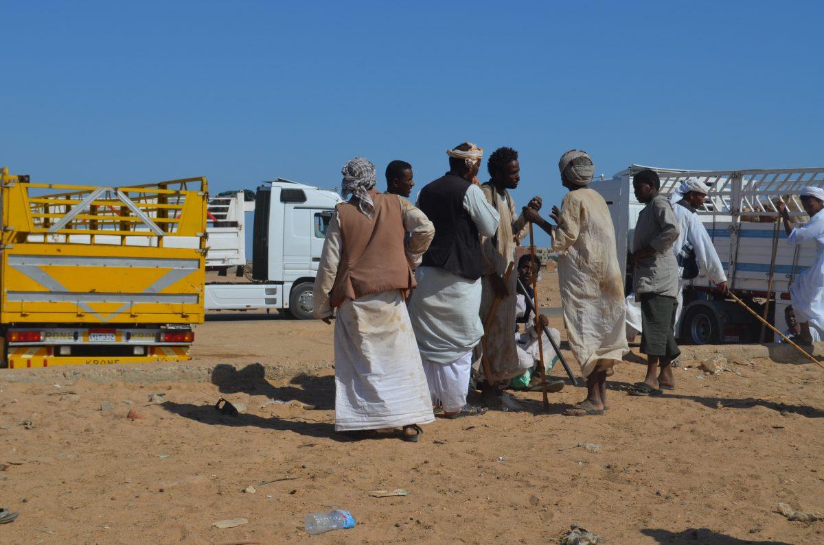 Суданці на верблюдячому базарі у Шалатіні, Єгипет.