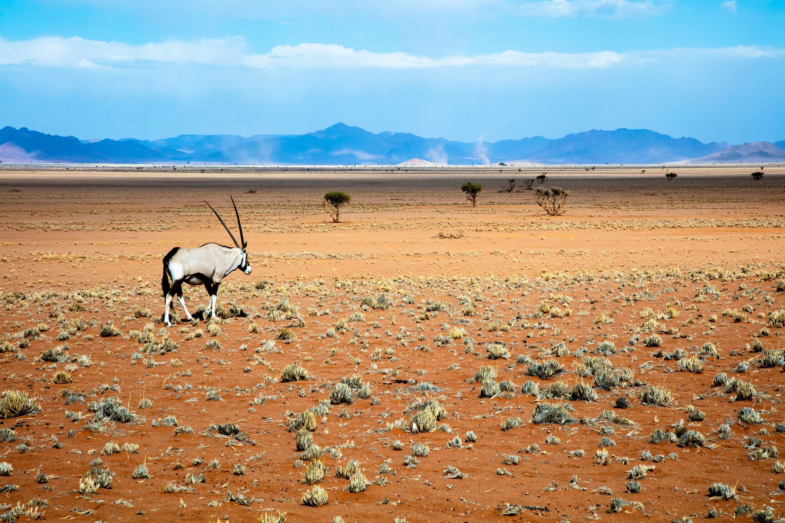 Африка Намібія