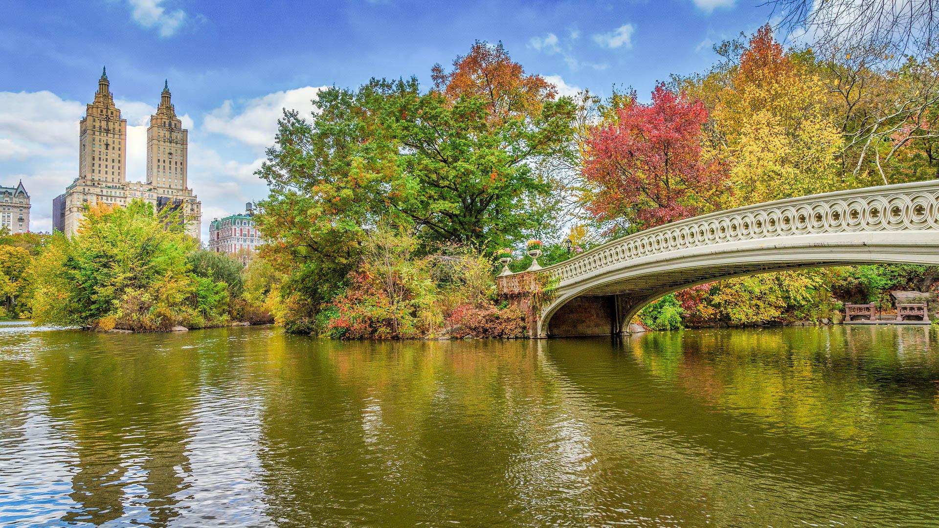 США Нью-Йорк Центральний парк
