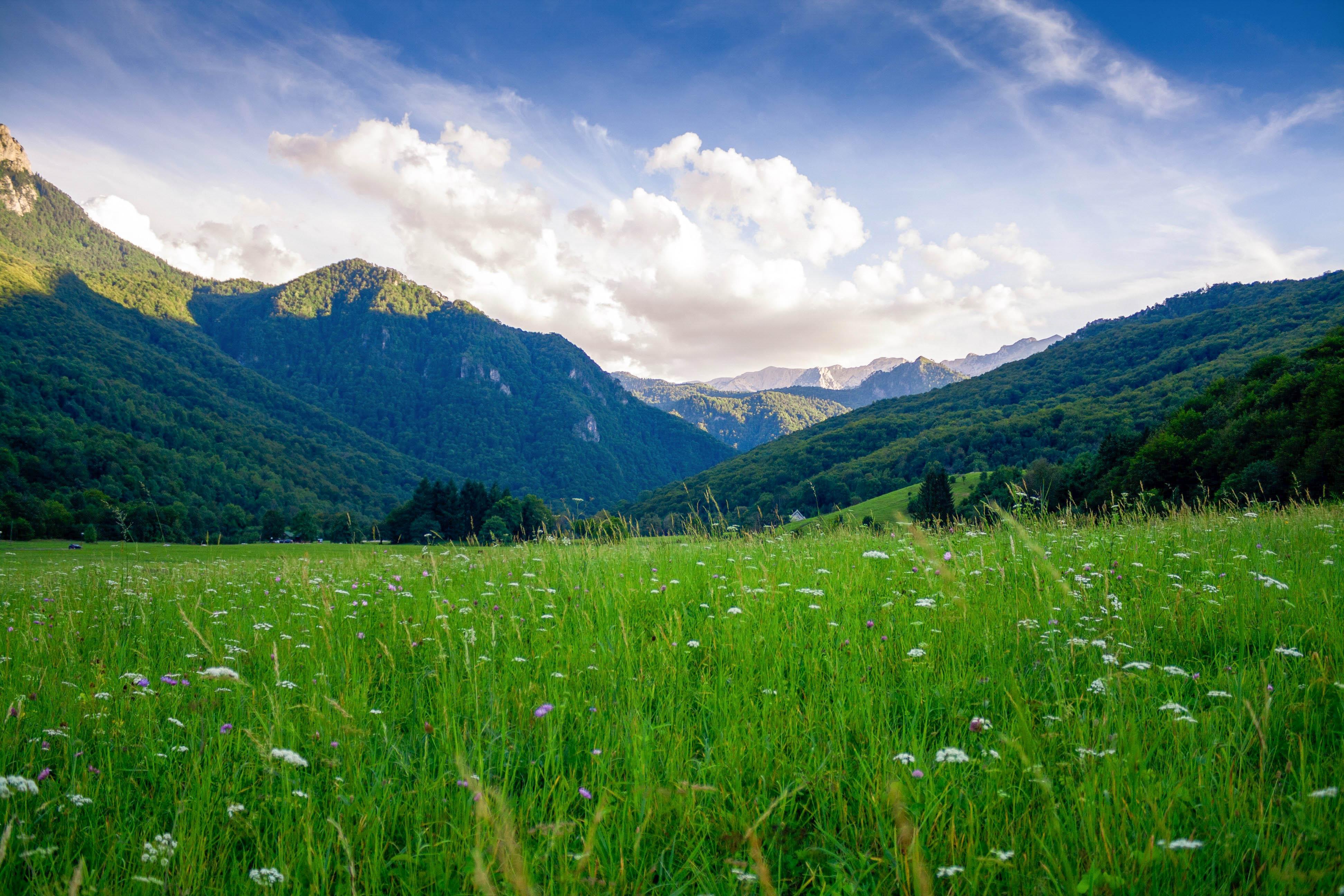 Боснія Сутьєска