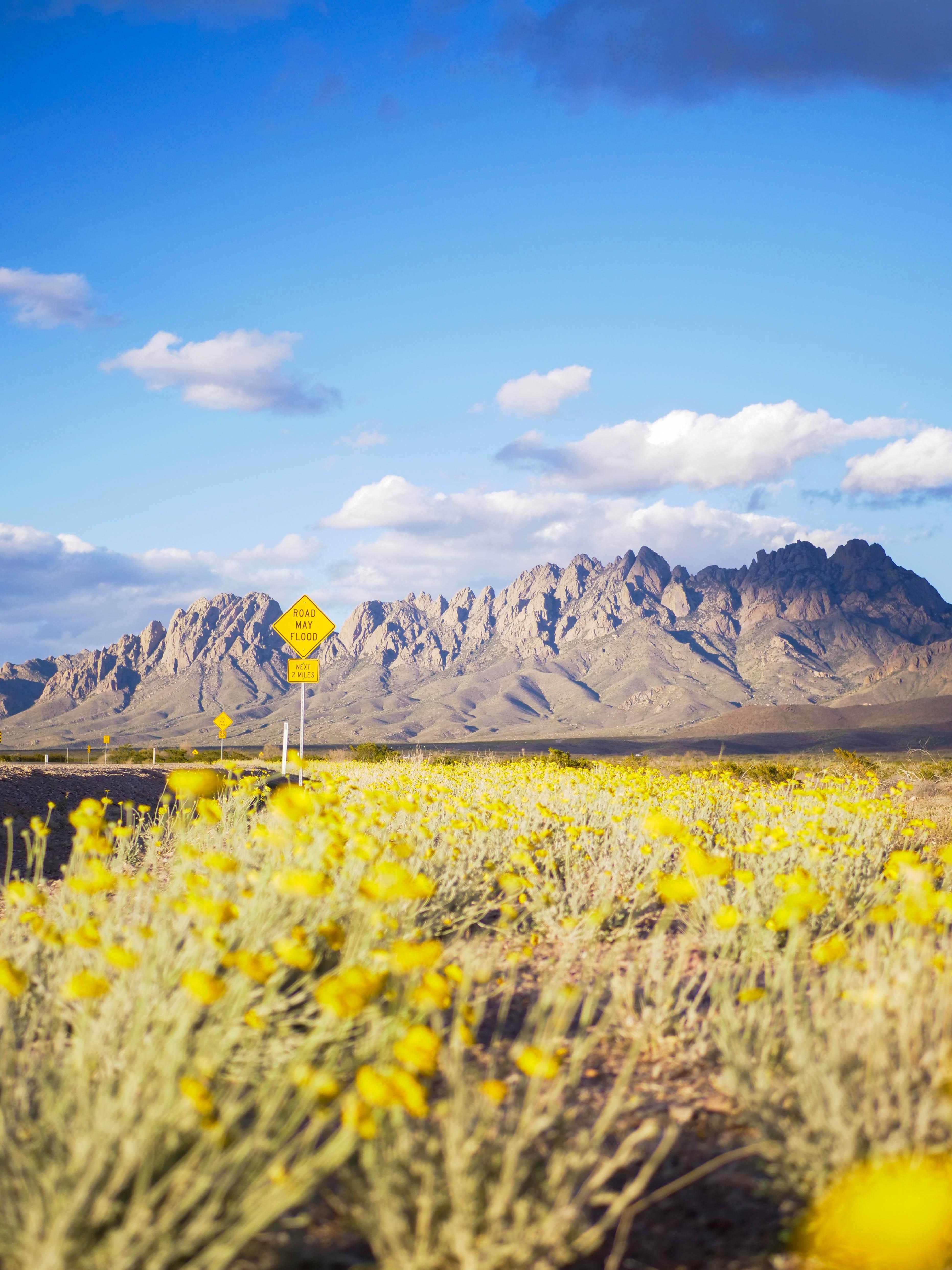 США Нью-Мексико Лас-Крусес