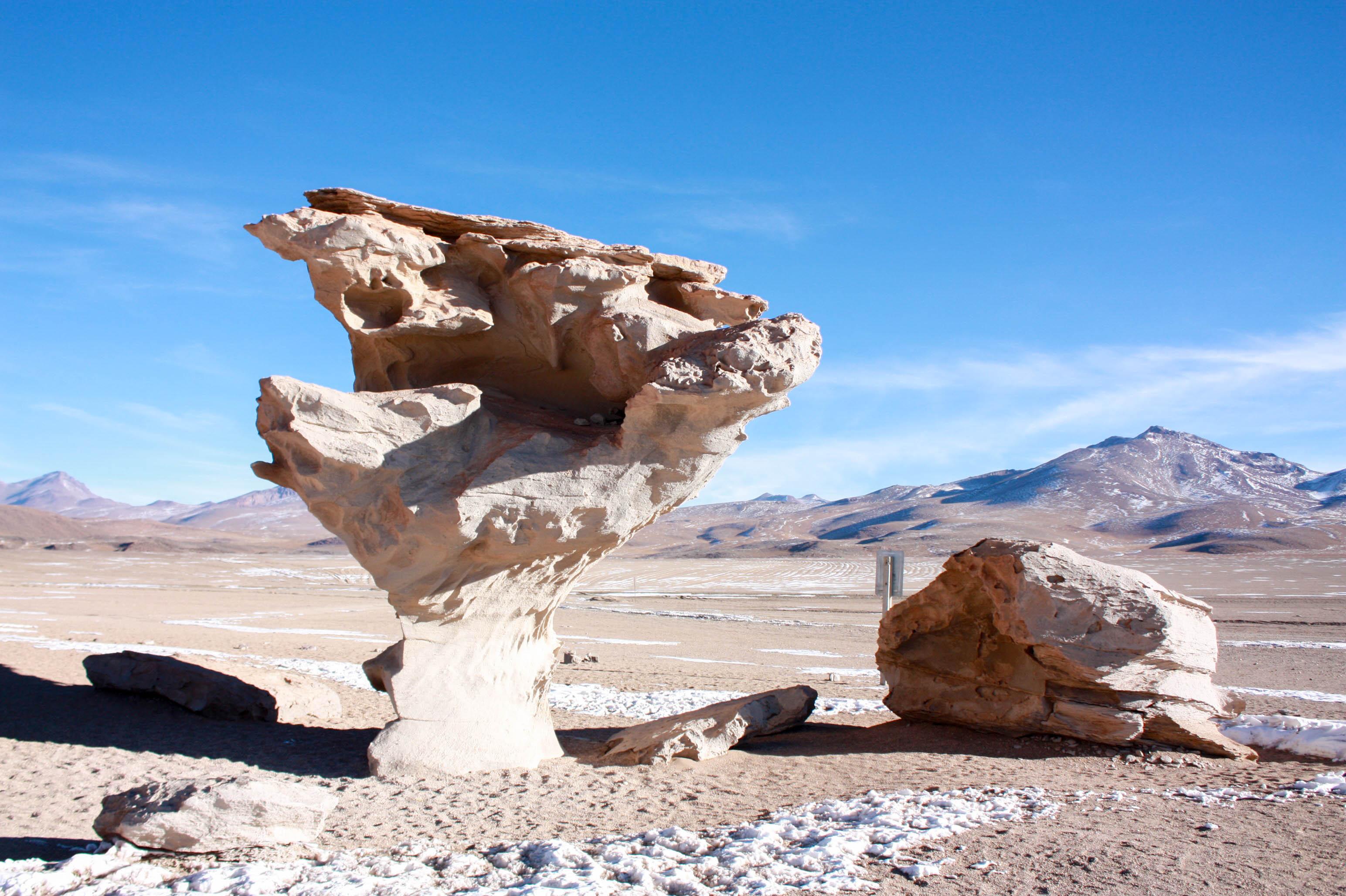Болівія Кам'яне дерево