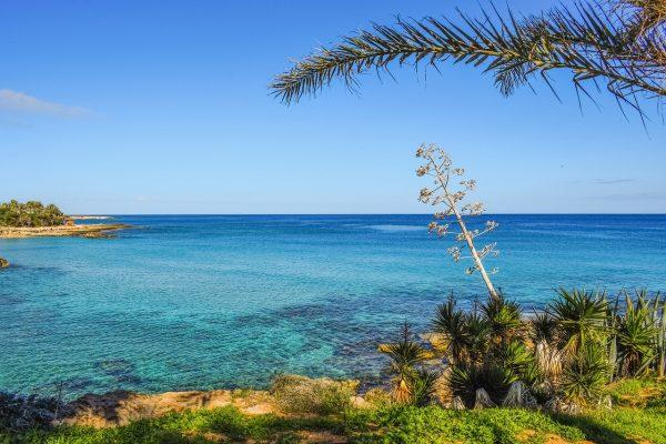 Кіпр Протарас