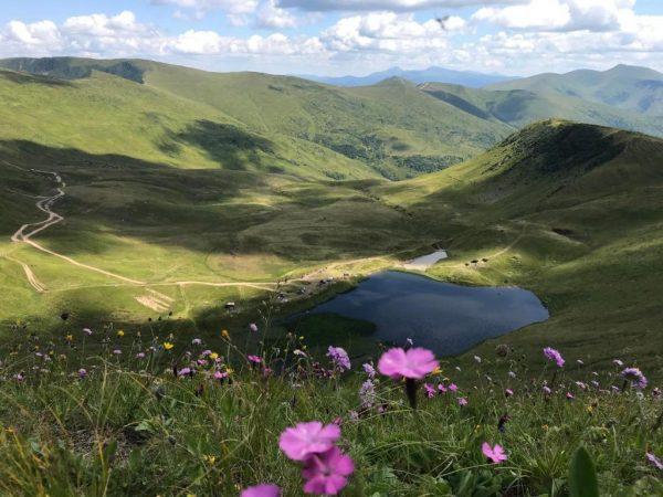 Alpin Eco Chalet & Wellness